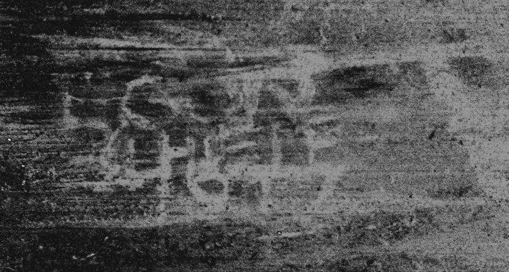 Firma Egon Schiele