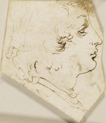 Leonardo da Vinci - The head of a youth in profile