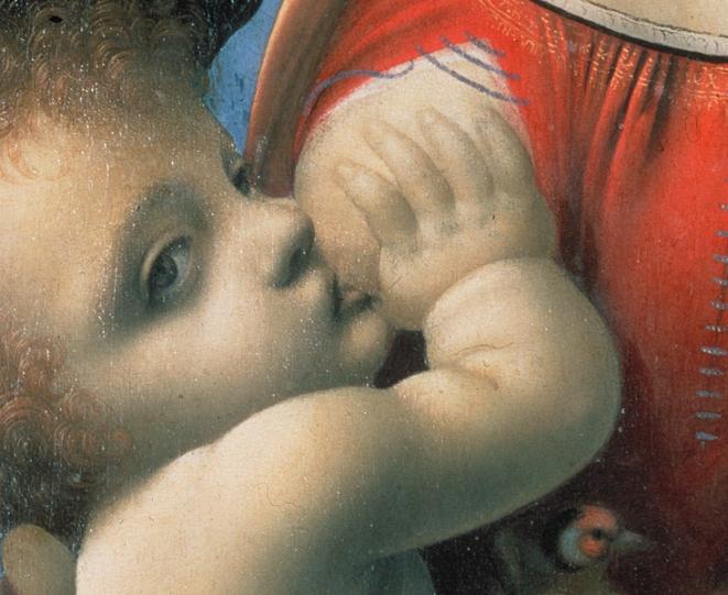 Dettaglio immagine, bambino-Madonna Litta, Leonardo da Vinci