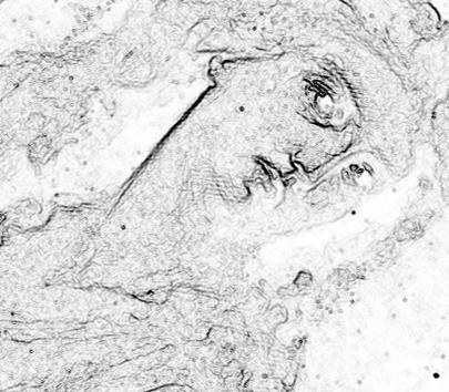 Leonardo da Vinci - elaborazione grafica