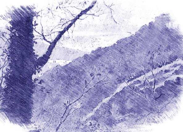 Paesaggi dell'Anima - Gallerie da Vinci - Vincent van Gogh, Landscape Provence - Drawing