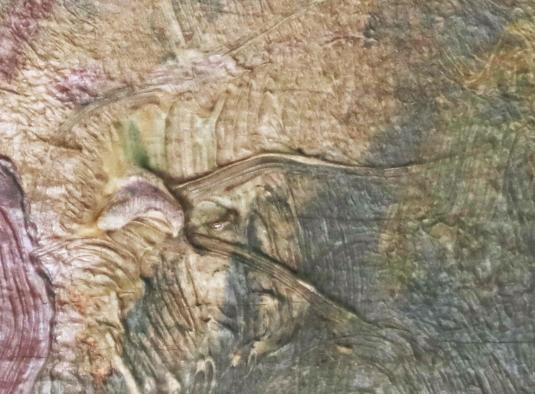 Van Gogh detail, Grasshopper